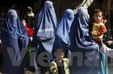 """""""Ai Cập cấm nam nữ làm việc chung, bán rượu"""""""