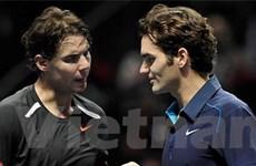 Australia Open: Không có chung kết Nadal-Federer