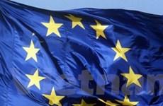 """Châu Âu không dễ """"ghìm cương"""" khủng hoảng nợ"""