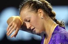 Australian Open: Nhà vô địch Wimbledon gục ngã!