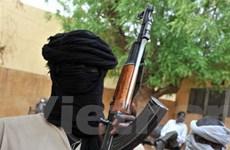 Phiến quân đánh sập cây cầu nối Mali với Niger