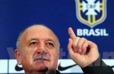 Scolari không đả động tới chuyện bị Chelsea sa thải