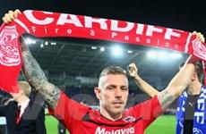 Cardiff trở lại Premier League sau hơn nửa thế kỷ
