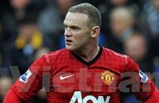 """Fan muốn """"đuổi"""" Rooney"""