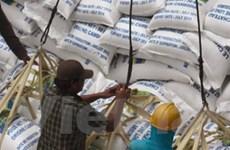 Campuchia xuất khẩu được 146.800 tấn gạo xay xát
