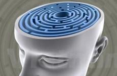Hơn 9 triệu người Trung Quốc mắc tâm thần phân liệt