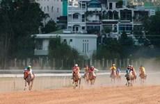 Lâm Đồng khởi động dự án trường đua ngựa nghìn tỷ