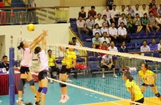 8 đội bóng dự giải bóng chuyền cúp PV-Đạm Phú Mỹ