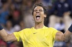 Nadal sẽ soán ngôi số 1 của Djokovic vào cuối năm?