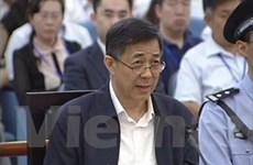 Bên công tố đề nghị tuyên phạt nặng với Bạc Hy Lai