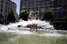 Đợt nắng nóng gay gắt đang hoành hành ở Ukraine
