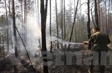 Nga ban bố tình trạng khẩn cấp do nạn cháy rừng