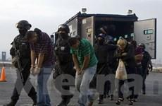 Mexico và Honduras tổng tấn công tội phạm ma túy