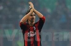 Ibrahimovic: Tôi nguyện sẽ trung thành với Milan