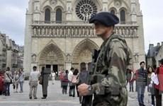 Interpol: Al-Qaeda có thể tấn công Mỹ và châu Âu