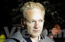 Nhà sáng lập trang WikiLeaks đã được tại ngoại