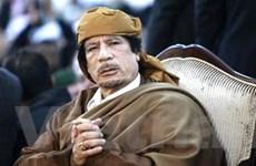 """""""Người dân Libya được phát huy quyền của mình"""""""