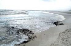 Nhiều vết dầu tràn dọc bờ biển phía Bắc Trung Quốc