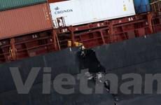 New Zealand triệu tập thuyền trưởng tàu gây tràn dầu