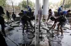 Thái Lan sẽ trùng tu các di tích lịch sử sau lũ lụt