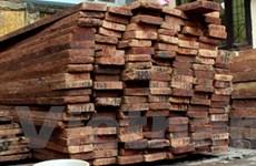 Bắt 1 kiểm lâm tiếp tay cho lâm tặc buôn gỗ quý
