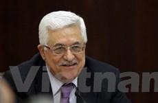Palestine bác bỏ kế hoạch hòa bình Trung Đông