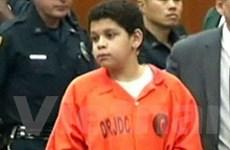 Mỹ: Cậu bé 13 tuổi bị kết án chung thân vì giết em