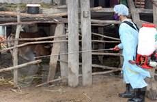 Xuất cấp vắcxin cho 9 địa phương phòng dịch bệnh
