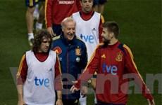 Italy và TBN lên danh sách sơ bộ dự EURO 2012