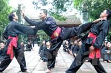 Bảo tồn, phát triển các lò võ cổ truyền Bình Định