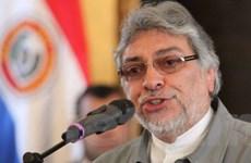 Brazil rút đại sứ ở Paraguay vì vụ bãi miễn ông Lugo