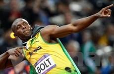 Usain Bolt chưa có ý định tranh tài ở môn nhảy xa