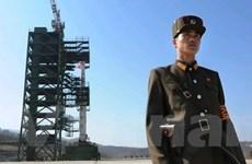 TQ phản ứng dự định phóng vệ tinh của Triều Tiên