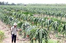 Thêm 10.000 tỷ đồng cho nông nghiệp, nông thôn