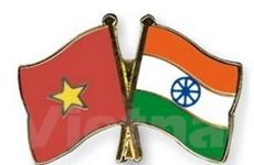 Người đi tìm cội nguồn để thúc đẩy quan hệ Ấn-Việt