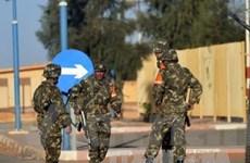 Toàn cảnh cuộc khủng hoảng con tin tại Algeria