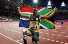 """""""Người không chân"""" Pistorius: Quá khứ huy hoàng"""
