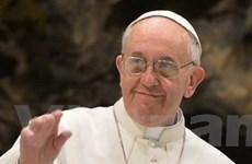 Chủ tịch nước gửi điện mừng Giáo hoàng Francis