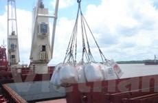 Venezuela sẽ tiếp tục nhập khẩu gạo từ Guyana