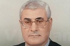 Ai Cập bắt đầu tiến trình thành lập chính phủ mới