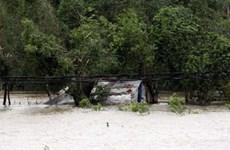 Thừa Thiên-Huế: 32 người bị kẹt trong rừng trở về nhà