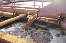 Xây 24 nhà máy xử lý nước lưu vực sông Nhuệ, Đáy
