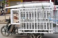 Sẽ xử lý các cơ sở sản xuất xe ba bánh trái phép