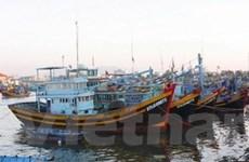 Vinashin đang tập trung đóng tàu đánh cá vỏ thép