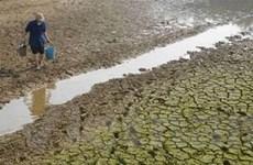 Trung Quốc, Mông Cổ thiệt hại nặng vì thời tiết