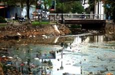 Cá chết tại hồ Trúc Bạch do nước ô nhiễm nặng