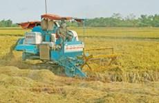 LHQ kêu gọi đầu tư có trách nhiệm vào nông nghiệp