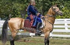 Turkmenistan tổ chức cuộc thi sắc đẹp cho… ngựa