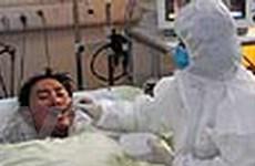 Cúm gia cầm tiếp tục lây lan rộng ở Trung Quốc