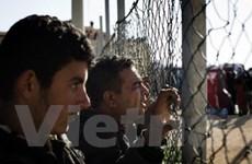 Italy và Tunisia giải quyết vấn đề nhập cư trái phép